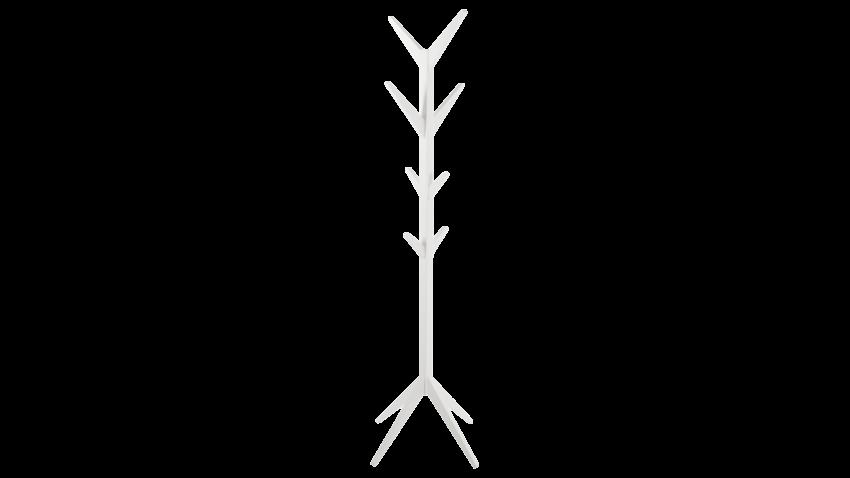 ASCOT-naulakko